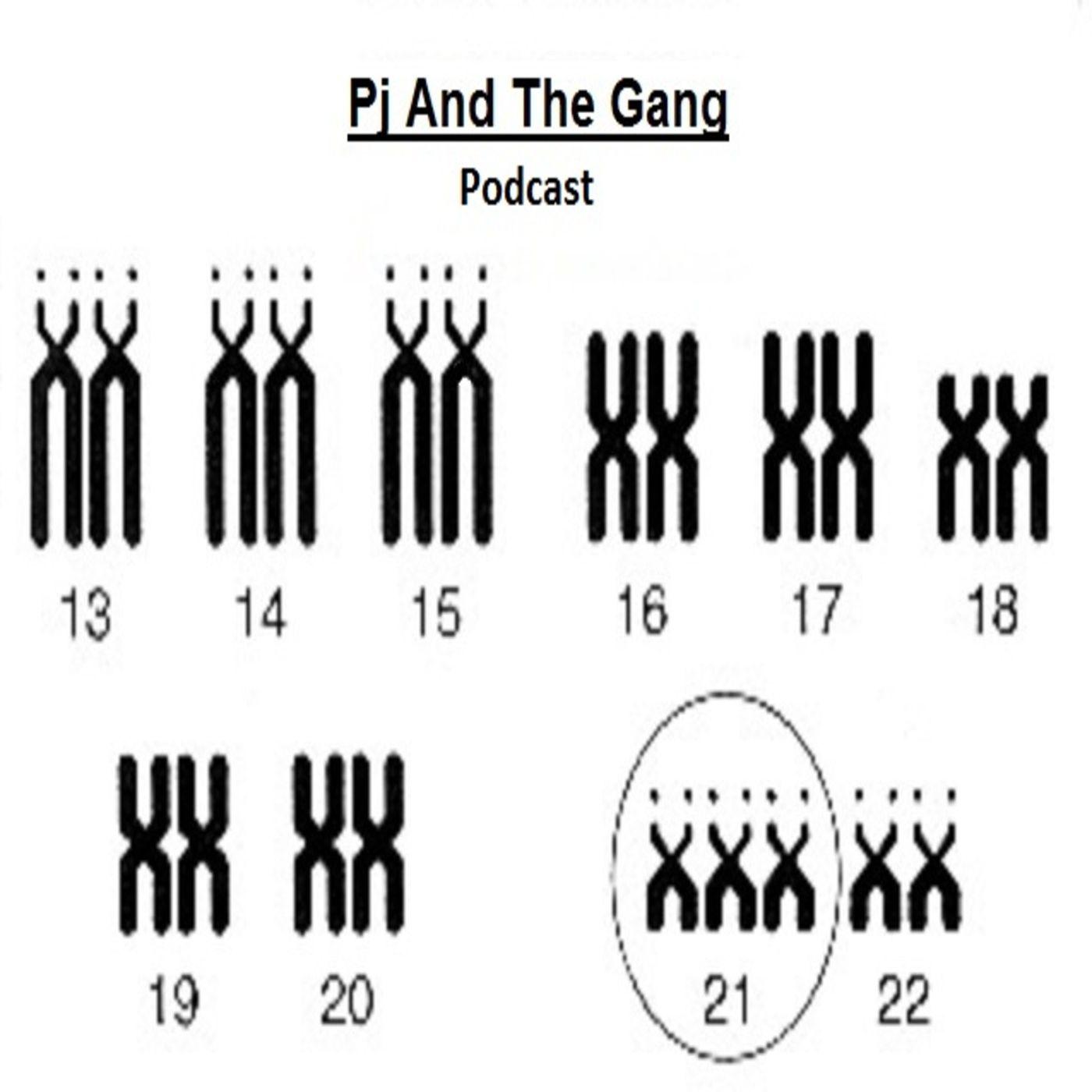 Pj And The Gang